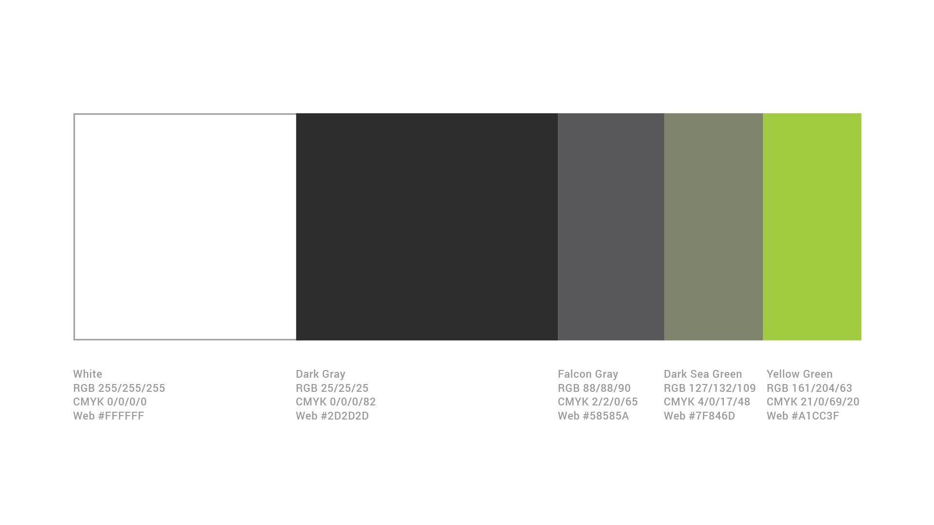fatema-numan–Color-Palette